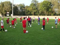 fcd-grasshoppers-techniktraining-009
