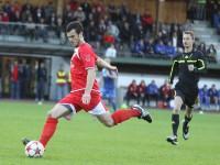 cup-dornb-groedig-2011-032