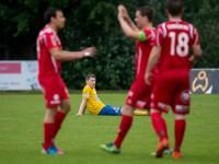 vfv-cup-sieg-2013-1405