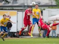 vfv-cup-sieg-2013-1415