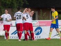VFV-CUP: VFB - FCD 1:2 (06.05.15)