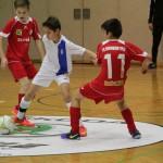 FC Futsal6
